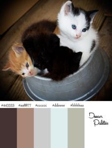 Palette9 Kittens